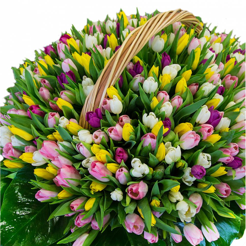 Красивые букеты тюльпанов с днем рождения