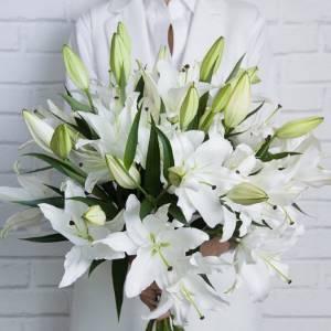 Букет 15 веток белой лилии с лентами 1503