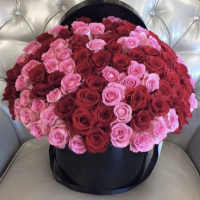 Красные и розовые розы в коробке R85