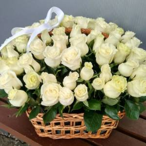 Корзина 51 крупная белая роза R488